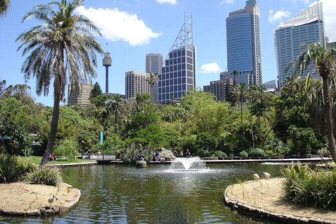 Top 20 things to do in Sydney: The Royal Botanic Garden of Sydney