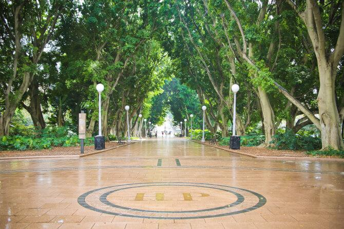 Top 20 things to do in Sydney: The main walkway of the Hyde Park