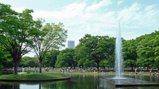 Top 20 things to do in Tokyo: Yoyogi Park in the summer