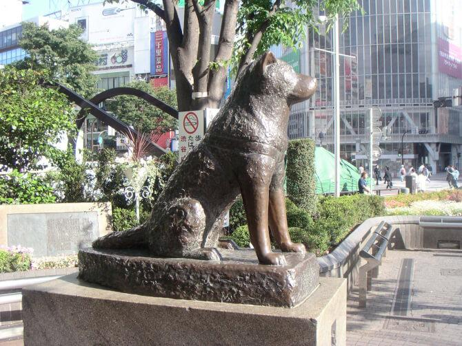 Top 20 things to do in Tokyo: Hachikou's statue