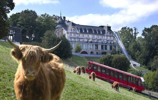 Top 20 things to do in Bern: Gurten
