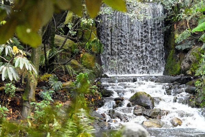 things to do in Bogota:Jardin Botanico