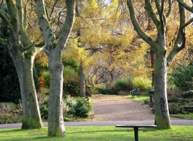 things to do in glasgow:Kelvingrove Park