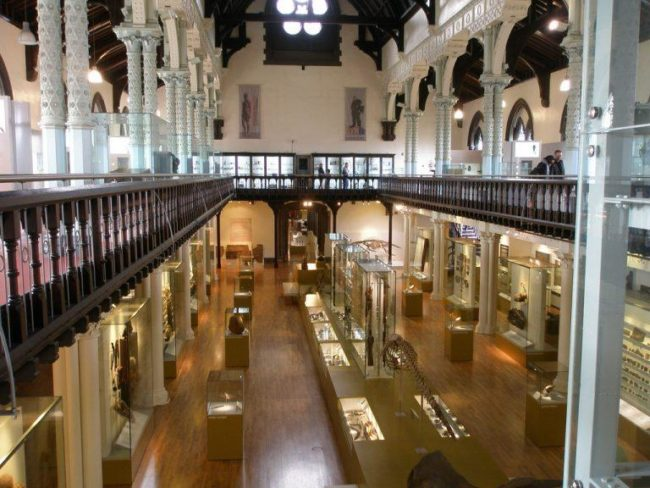 things to do in glasgow:Hunterian Museum<