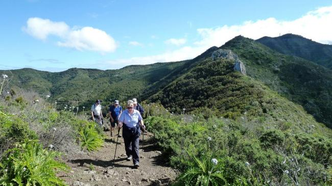 things to do in tenerife:Tenerife Guided