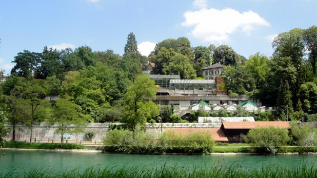 Top 20 things to do in Bern: Botanic Garden