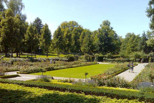 Top 20 things to do in Bern: Rosengarten