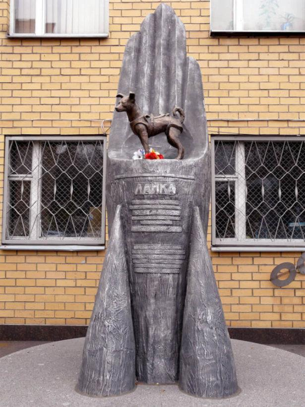 Top 20 things to do in Moscow: The Laika Monument