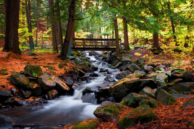 Top 20 things to do in Ottawa: Gatineau Park