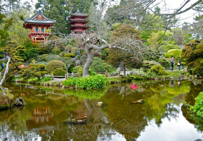 Top 20 things to do in San Francisco: Japanese Tea Garden