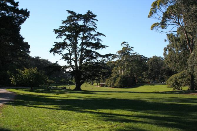 Top 20 things to do in San Francisco: Golden Gate Park