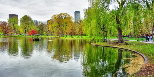 Top 20 things to do in Boston: Boston Public Garden