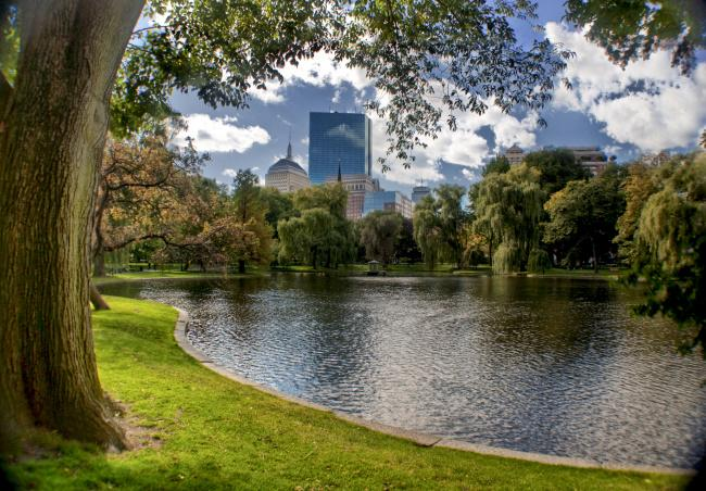 Top 20 things to do in Boston: Boston Common