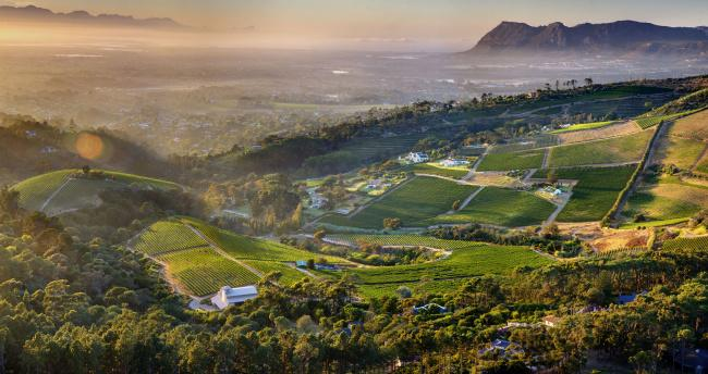 Top 20 things to do in Cape Town: Constantia Valley