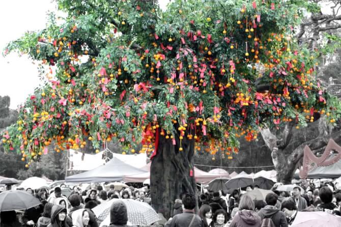 Top 20 things to do in Hong Kong: Lam Tsuen Wishing Trees