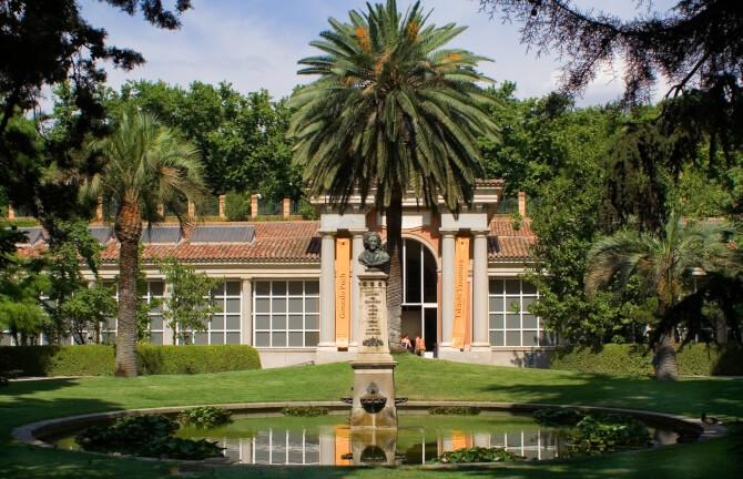 Top 20 things to do in Madrid: Real Jardín Botánico