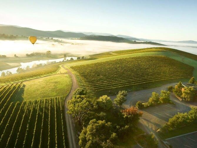 Top 20 things to do in Melbourne: Yarra Valley