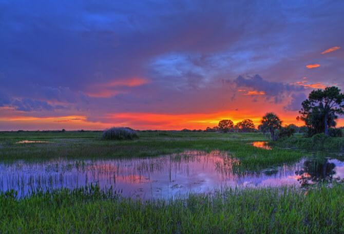 Top 20 things to do in Miami: Everglades National Park