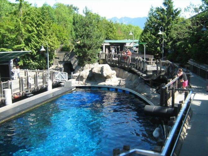 Top 20 things to do in Vancouver: Vancouver Aquarium