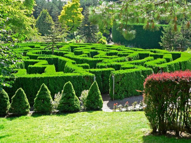 Top 20 things to do in Vancouver: VanDusen Botanical Garden