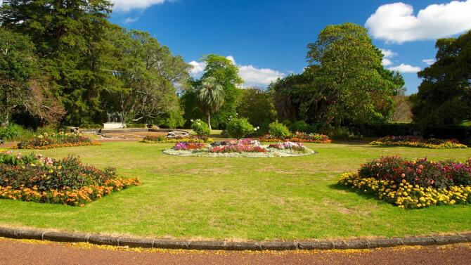 Top 20 things to do in Auckland: Auckland Domain