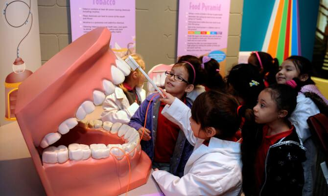 Top 20 things to do in Baltimore: National Museum of Dentistry