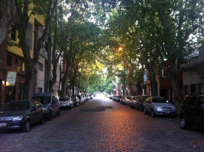 Top 20 things to do in Buenos Aires: Palermo