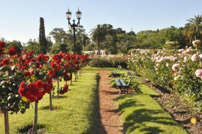 Top 20 things to do in Buenos Aires: Rose Garden Walk