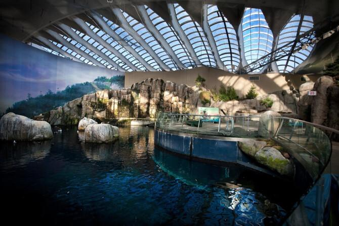 Top 20 things to do in Montreal: Montreal Biodome