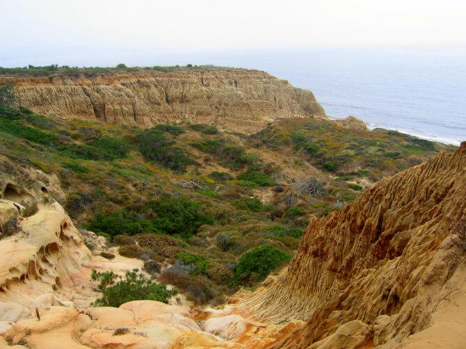 Top 20 things to do in San Diego: Torrey Pines State Reserve