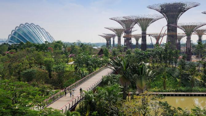 Top 20 things to do in Singapore: Gardens by the Bay