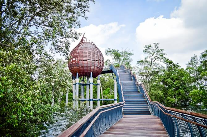 Top 20 things to do in Singapore: Sungei Buloh Wetland Reserve