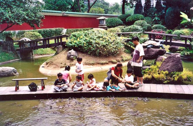 Top 20 things to do in Singapore: The Live Turtle and Tortoise Museum