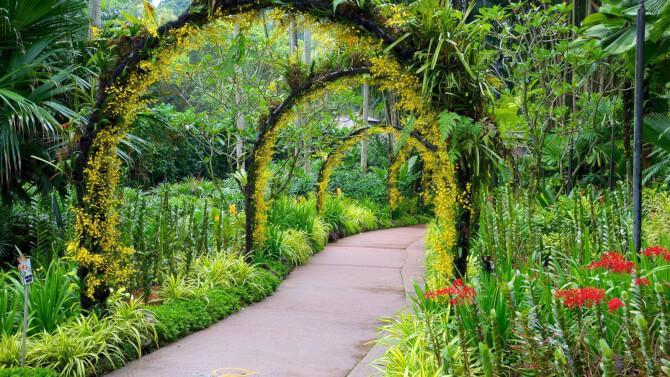 Top 20 things to do in Singapore: Singapore Botanic Gardens