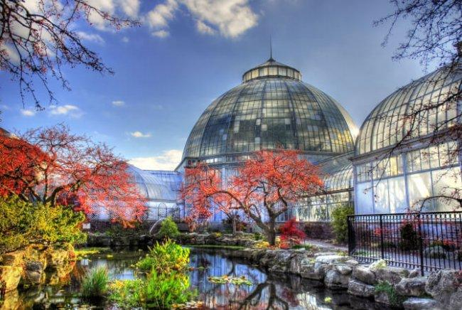 Top 20 things to do in Detroit: Belle Isle Conservatory