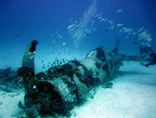 Top 20 things to do in Honolulu: Corsair Plane Wreck Dive Site