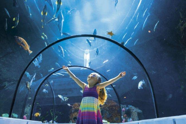 Top 20 things to do in Quebec City: Aquarium du Québec