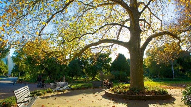 Top 20 things to do in Adelaide: Adelaide Botanic Garden