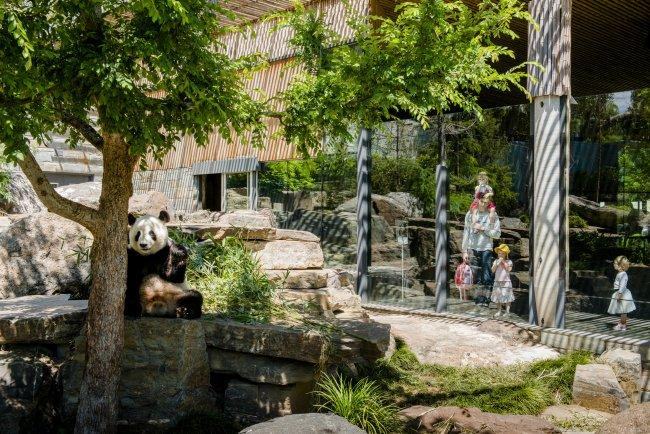 Top 20 things to do in Adelaide: Adelaide Zoo