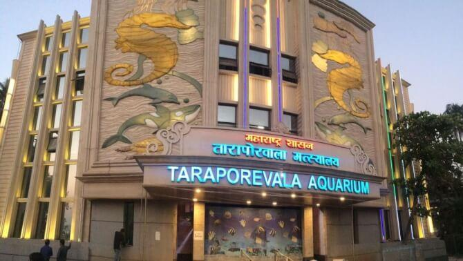 Top 20 things to do in Mumbai: Taraporewala Aquarium