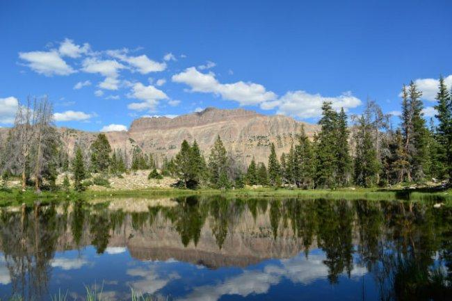 Top 20 things to do in Salt Lake City: Uinta-Wasatch-Cache National Forest