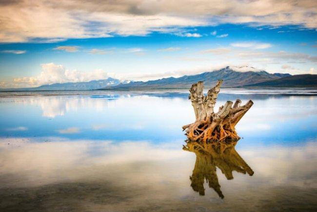 Top 20 things to do in Salt Lake City: Great Salt Lake