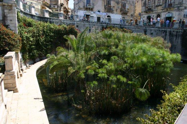 Top 20 things to do in Sicily: Fountain of Arethusa